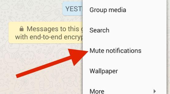 Cara Menyembunyikan Pemberitahuan WhatsApp Dengan Opsi Mute