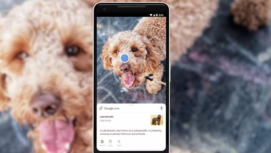 Cara Menggunakan Google Lens di iPhone dan iPad Terbaru