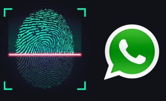 Cara Mengaktifkan Sidik Jari WhatsApp di HP Android
