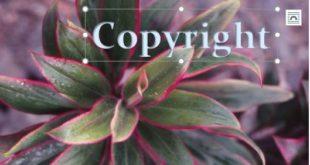 Cara Menghilangkan Watermark di Aplikasi Photoshop