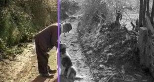 Cara Mengubah Gambar Menjadi Hitam Putih Secara Online